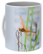 Orange Dragonfly On The Water's Edge Coffee Mug