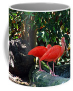 Orange Feathered Friends Coffee Mug