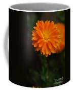 Orange Feathers Coffee Mug