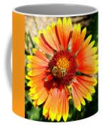 Orange Fiery Gaillardia Flower And Bee Macro Coffee Mug