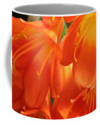 Orange Flower Petals Coffee Mug