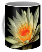 Orange Glow   # Coffee Mug