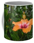 Orange Hibiscus Blossom Coffee Mug