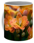 Orange Kalanchoe With Company Coffee Mug