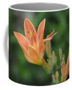 Orange Lily Photo 2 Coffee Mug