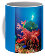 Orange-lined Triggerfish Balistapus Coffee Mug