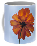 Orange On Blue Coffee Mug