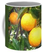 Orange On Tree Coffee Mug