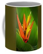 Orange Pocket Fold Coffee Mug