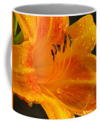 Orange Rain Coffee Mug