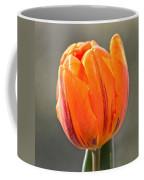 Orange Red Tulip Square Coffee Mug
