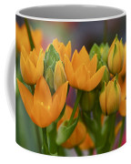 Orange Stars - Floral - Ornithogalum Dubium - Sun Stars Coffee Mug