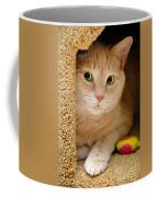 Orange Tabby Cat In Cat Condo Coffee Mug