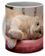 Orange Tabby Cat Lying Down Coffee Mug by Amy Cicconi