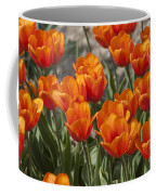 Orange Tulips  Coffee Mug