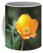 Orange Welsh Poppy Coffee Mug