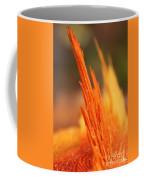 Orange Wood Fragment On Stump Coffee Mug