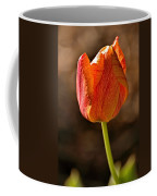 Orange/yellow Tulip Coffee Mug