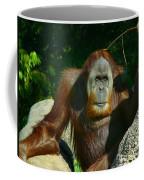 Orangutan Scratches With Stick Coffee Mug