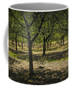 Orchard In West Michigan No. 279 Coffee Mug