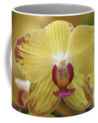 Orchid 141 Coffee Mug