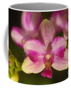 Orchid 144 Coffee Mug