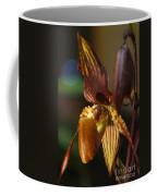 Orchid 150 Coffee Mug