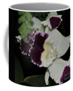 orchid 220 Cattleya Moscombe 'The King'  2 of 3 Coffee Mug