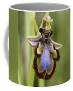 Orchid 25 Coffee Mug