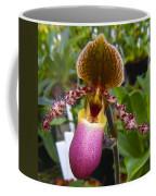 Orchid 31 Coffee Mug