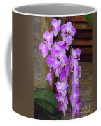 Orchid Beauties Coffee Mug