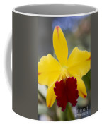 Orchid Beauty - Cattleya - Pot Little Toshie Mini Flares Mericlone Hawaii Coffee Mug by Sharon Mau