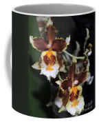 Orchid Brown Yellow White Macro Coffee Mug