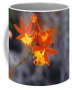 Orchid Circus Coffee Mug
