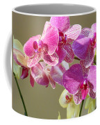 Orchid Flowers Art Prints Pink Orchids Coffee Mug