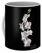 Orchid Flowers On Black Coffee Mug