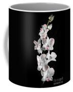 Orchid Flowers On Black Coffee Mug by Elena Elisseeva