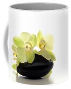 Orchid Flowers On Polished Stone Coffee Mug