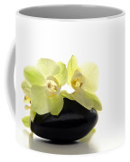 Orchid Flowers On Polished Stone Coffee Mug by Olivier Le Queinec
