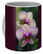 Orchid One Coffee Mug