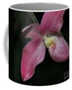 Orchid Phragmipedium Hanna Popow 2 Of 2 Coffee Mug