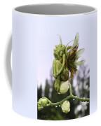 Orchid Pixie Coffee Mug