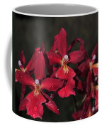 Orchid Red Burrageara Living Fire  Glowing Ember Coffee Mug