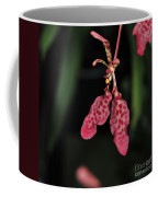 Orchid Red Renanthera Unnamed Coffee Mug