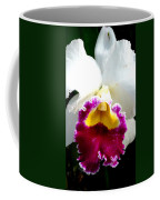 Orchid Series 2 Coffee Mug