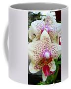Orchid Series 5 Coffee Mug