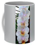 Orchid Series 7 Coffee Mug