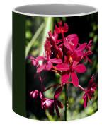 Orchid Study V Coffee Mug