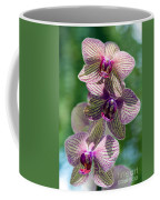 Orchid Two Coffee Mug
