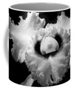 Orchid With Black Wings Coffee Mug